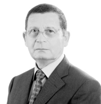 דוד גרינברג